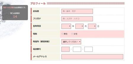 アルファ登録HP画面個人情報入力-min